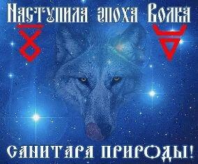 Эпоха волка